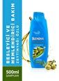 Blendax Besleyıcı Ve Nemlendırıcı Bakım Zeytınyağı Özlü Şampuan 500 Ml Renksiz